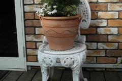 白い椅子に、レースラベンダー、イベリス、ヒメコスモスの「寄せ植え」。 �2800-2.jpg 重量感のある素焼きの鉢に、マートルのスタンダード仕立ての「寄せ植え」。私のお気に入りの「寄せ植え」のひとつです。