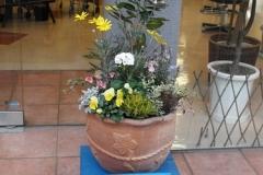 ブルーが店舗カラーの美容室店さま。鉢台もブルーで統一。ホンコントウダンを主木に、白と黄色のお花で飾りました。 �0779-2.jpg