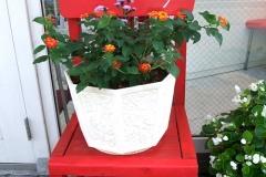 手造りの椅子の上に、ランタナとユウゼンギクを植栽し置いています。木製椅子には手書き風に白い文字を彫ってみました。