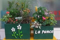 店舗カラーである緑と黄色を使った木製コンテナに、17種類の植栽を植え込んでいます。
