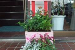 写真ではまだ咲いていませんが、これからダリアが咲き出します。ユーカリなど葉の形に特徴のある植栽をもってきました。