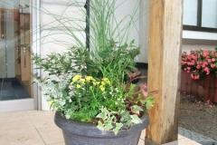 イトバススキを使った秋の寄せ植え。